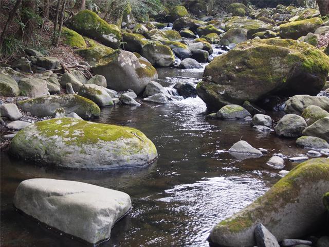 久野川の渓谷