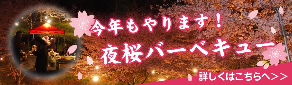峯自然園の夜桜バーベキュー
